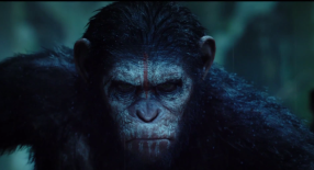 Rise of the Planet of the Apes Trailer Images